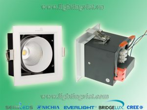 đèn led downlight 1*10w